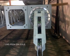 LMS-PS24-GINPOLE-Head